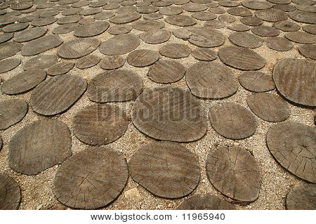 Image Of Crosscut Wood,