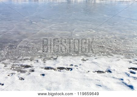 Frozen Riverbank In Sunny Winter Day