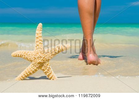 Human feet on the wet sand with a starfish.