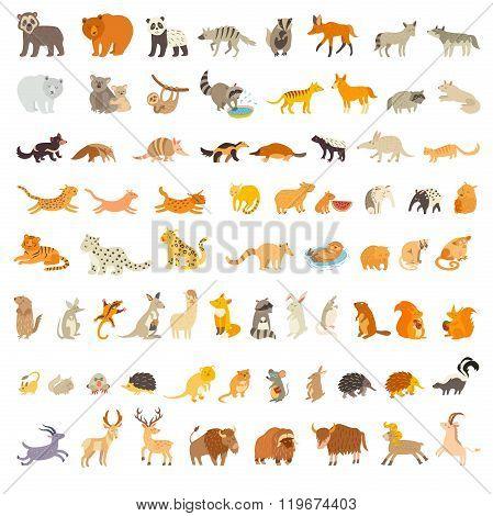 Mammals of the world. Extra big animals set. Vector illustration