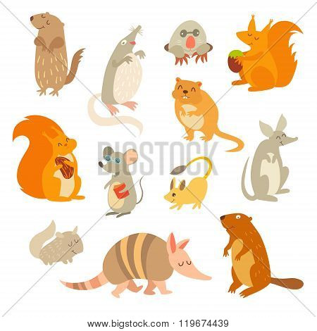 Rodent of the world a big set vector illustration. Isolated on a white background