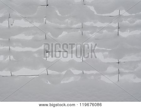 Snow On Wire Mesh, South Bohemia