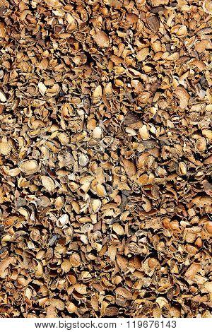 Almond shells texture in Teruel Albarracin of Spain