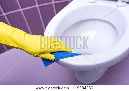 Hands wash the toilet.