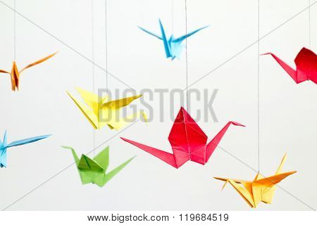 Origami Birds On White