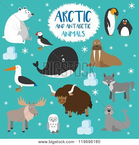 Vector set Arctic and Antarctic animals. Penguin, polar bear, seal, reindeer, whale, snowy owl, albatross, puffin, walrus, fox and yak. Set of polar animals. Flat style character. Vector illustration