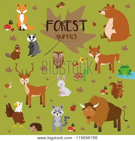 Vector set Forest animals. Fox, bear, squirrel, deer, rabbit, turtle, wolf, beaver, owl, birds, frog, hedgehog, badger, eagle, snail, raccoon and bison. Flat style character. Vector illustration.