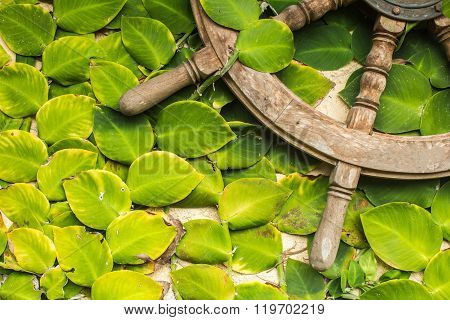 Stone Wall With Greenery Decorated With Helm. Texture