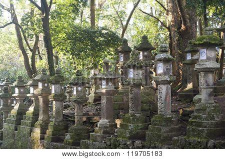 Rows Of Kasuga Taisha Lanterns