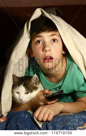 Boy With Cat  Watch Horror Movie