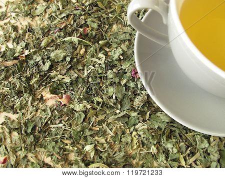 Cup of tea on tea herbs