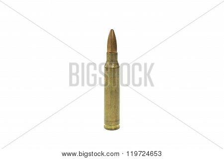 Golden ammo on white background.