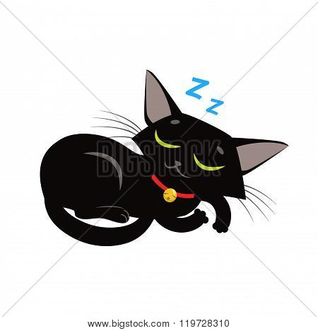 Sleeping Cat Vector. Sleeping Cat Meme Picture. Sleeping Cat Toy. Sleeping Cat Plush. Sleeping Cat Figurine. Vector Cat Purring. Vector Cat Funny.