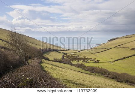 View Towards Ayrmer Cove, Devon, England
