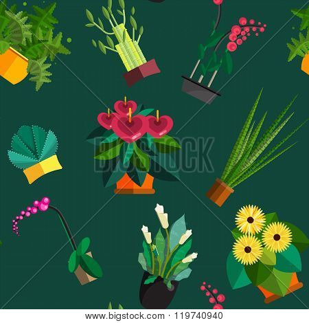 Illustration of houseplants, indoor and office plants in pot. Dracaena, fern, bamboo, spathyfyllium,