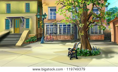 Courtyard with Tree and Bench. Back  View