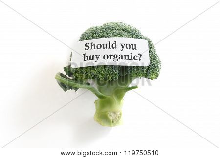 Buy Organic Label