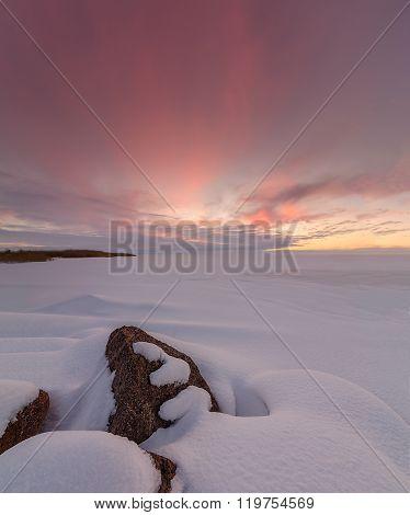 Winter landscape on Chudskoy lake