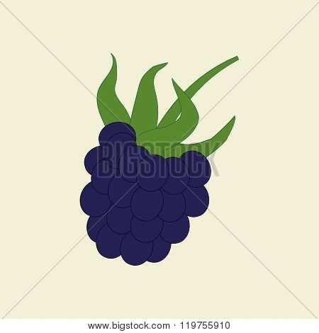 Dewberry Berry Icon