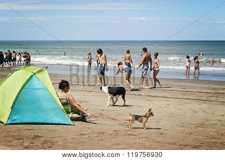 people playing in a beach