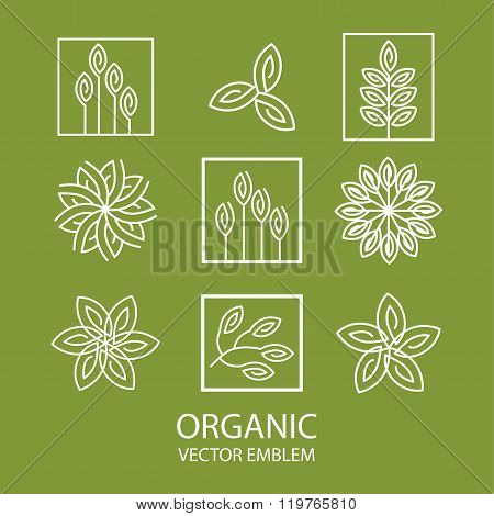 Vector set abstract organic emblem, outline monogram, flower symbol