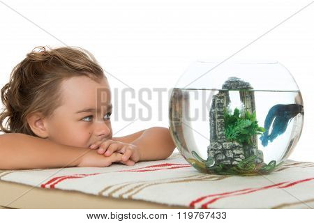 Girl looking at an aquarium with fish