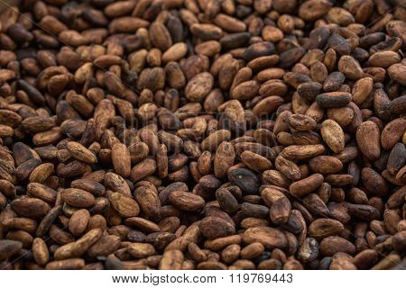Pattern of the Raw cocoa beans background