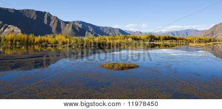 tibet: autumn landscape