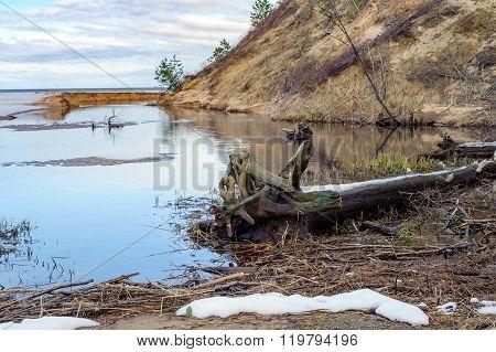 Baltic sea dirty coastline near Saulkrasti town, Latvia