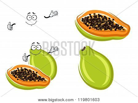Healthful tropical cartoon papaya fruit