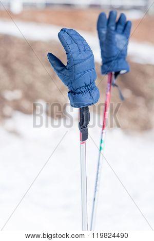 Blue Winter Gloves On Ski Poles