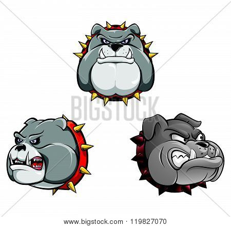Bull Dog Head Collection