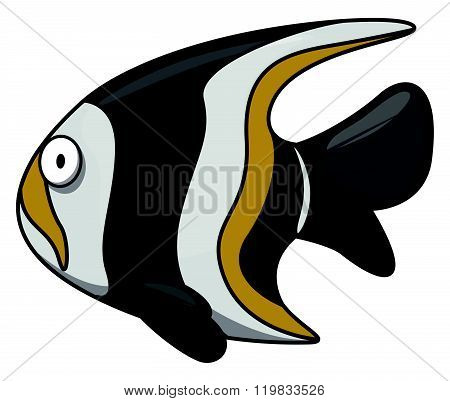 Moorish idol Underwater fish