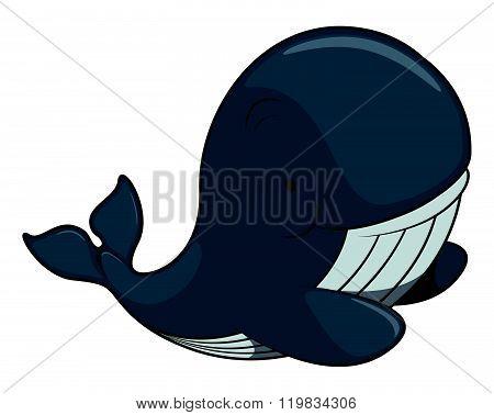 Cute whale vector illustratio