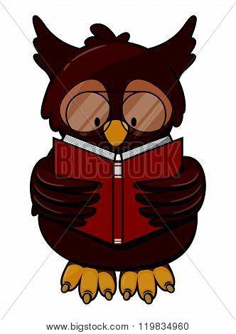 Owl read book