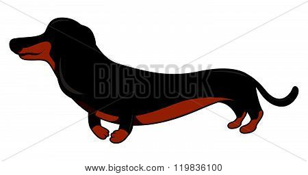 Dachshund cartoon illustration isolated white