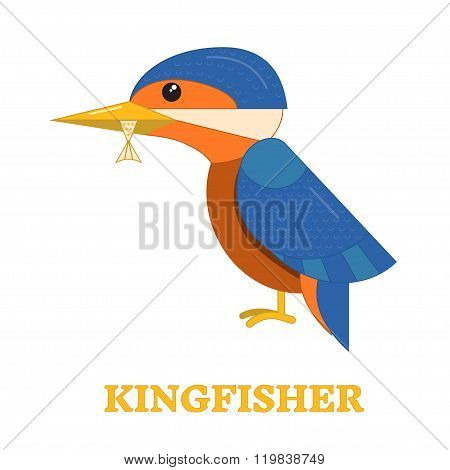 Kingfhisher Bird Icon
