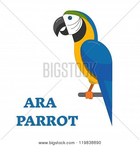 Tropical Bird Ara Parrot