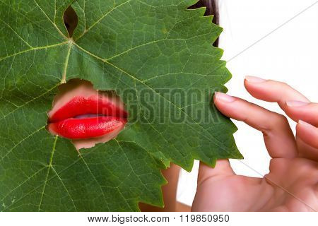 Green tree leaf with red lips peeping through