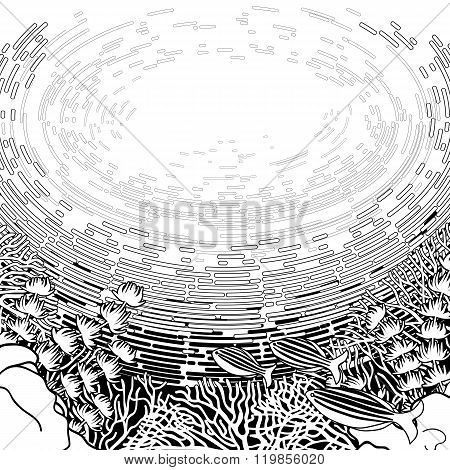 Graphic coral reef design