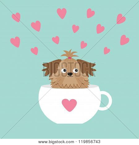 Shih Tzu Dog Sitting In White Cup With Heart. Cute Cartoon Character. Flat Design.  Blue Background.