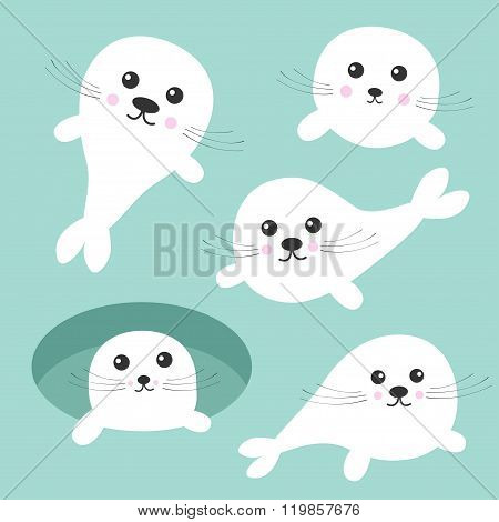 Seal Pup Baby Harp Set. Ice-hole Cute Cartoon Character. Blue Background. Flat Design