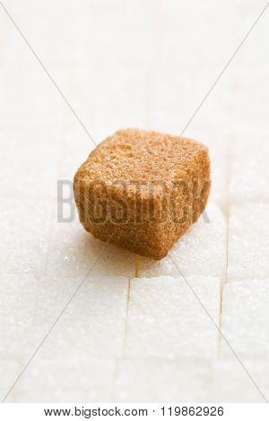 brown cane sugar cube on white sugar cubes