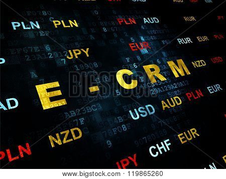Business concept: E-CRM on Digital background