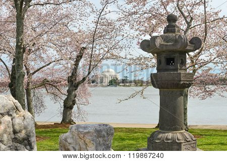 Washington DC in Spring time - Japanese lantern at Tidal Basin during Cherry Blossom Festival