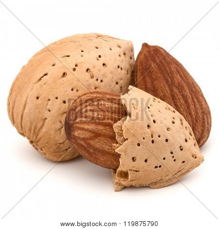 Almond nut in shell and shelled isolated on white background close up