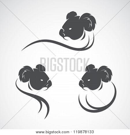 Vector Image Of An Koala Bear Design On White Background