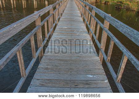 Wooden Bridge In Lotus Lake