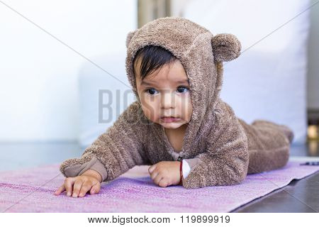 Six month mexican baby boy crawls on a bear costume