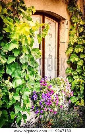 House Window Decorated With Colorful Petunias